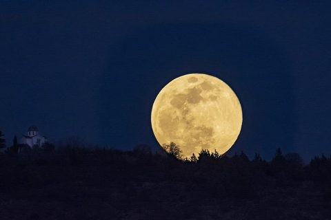 O Meu Diário da Lua
