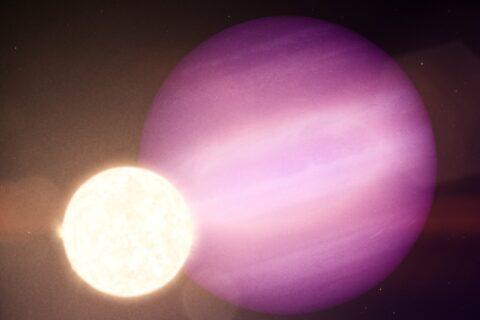 Um companheiro planetário inesperado